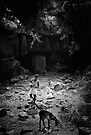 From the Darkness of the Cave. by lamiel
