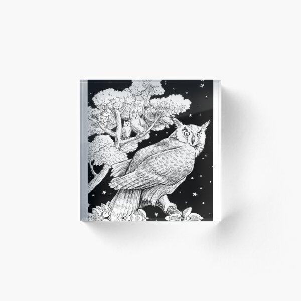 The Night Owl Acrylic Block