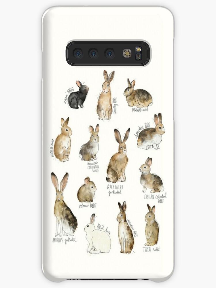 Kaninchen und Hasen von Amy Hamilton