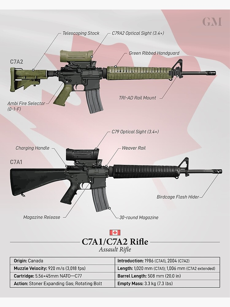 C7A2/C7A1 - Canada's Service Rifle by nothinguntried