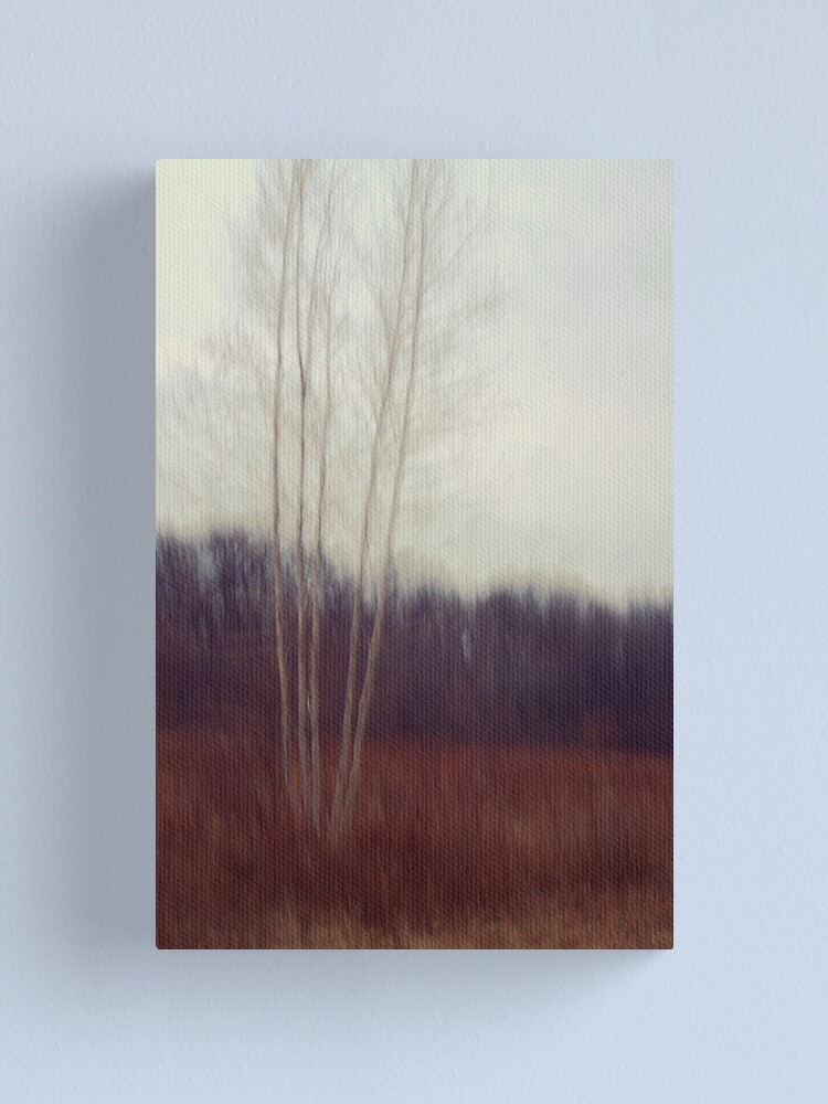 Alternate view of Lone Birch  Canvas Print