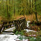 Winter Bridge Simplified Version 1 by Michael Garson