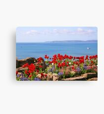 Tulips on the East Cliff, Bournemouth Canvas Print