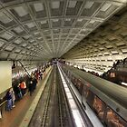 The Metro by Lori Deiter