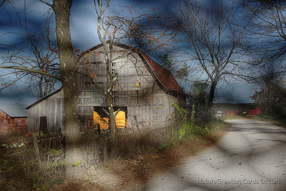 Whispers Of A Cold Autumn Wind by NatureGreeting Cards ©ccwri