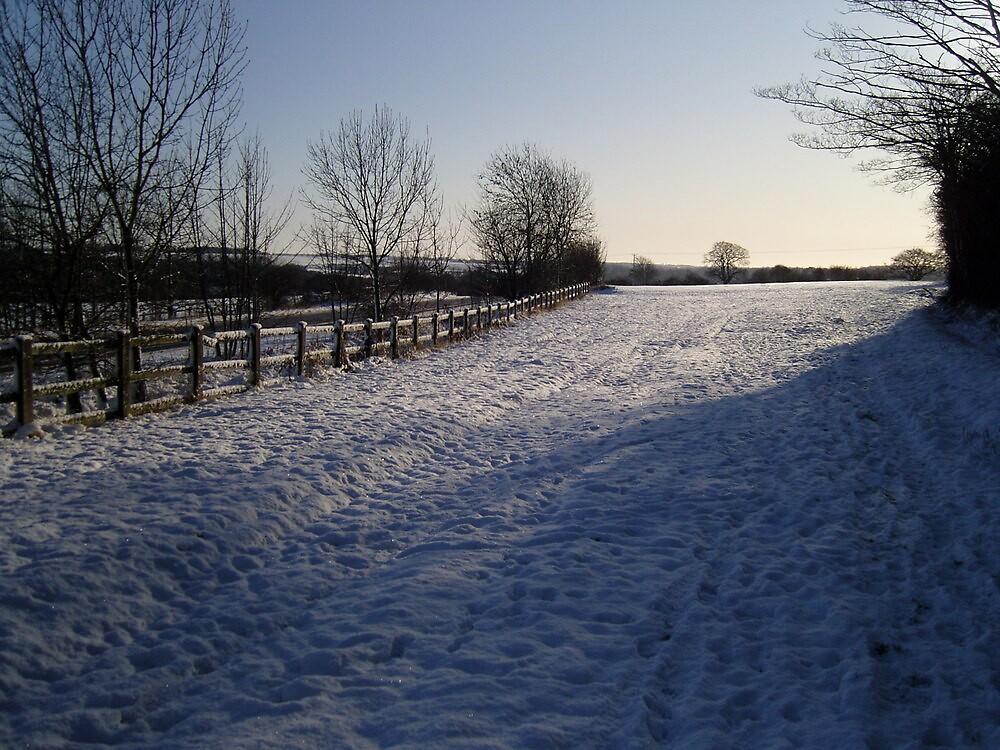 Snow Scene in Hertfordhire by puddingpiesjb