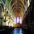 Lichfield Cathedral 1 by artfulvistas