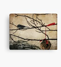 Chick-a-dee Treat Canvas Print