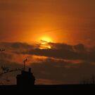Golden Sunset 03 by Peter Barrett