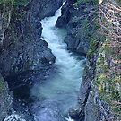 Sooke River Gorge (1) by Jann Ashworth