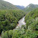 Franklin - Gordon Wild Rivers National Park, Tasmania by Of Land & Ocean - Samantha Goode