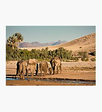 Family trudges ahead Photographic Print