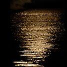Moon Rise by Klaus Bohn