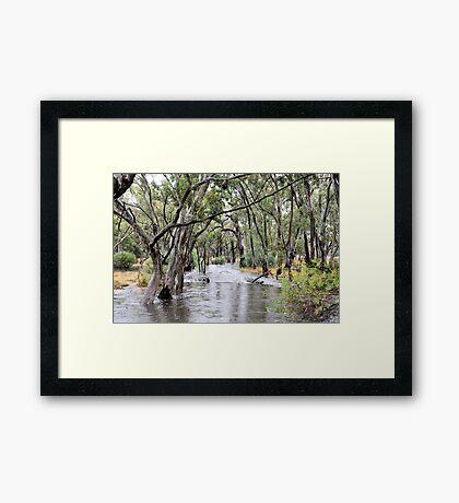 Bungallaly Creek Framed Print