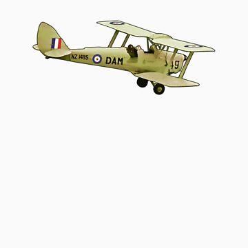 De Havilland Tiger Moth ZK-DAM by redwoodkiwi
