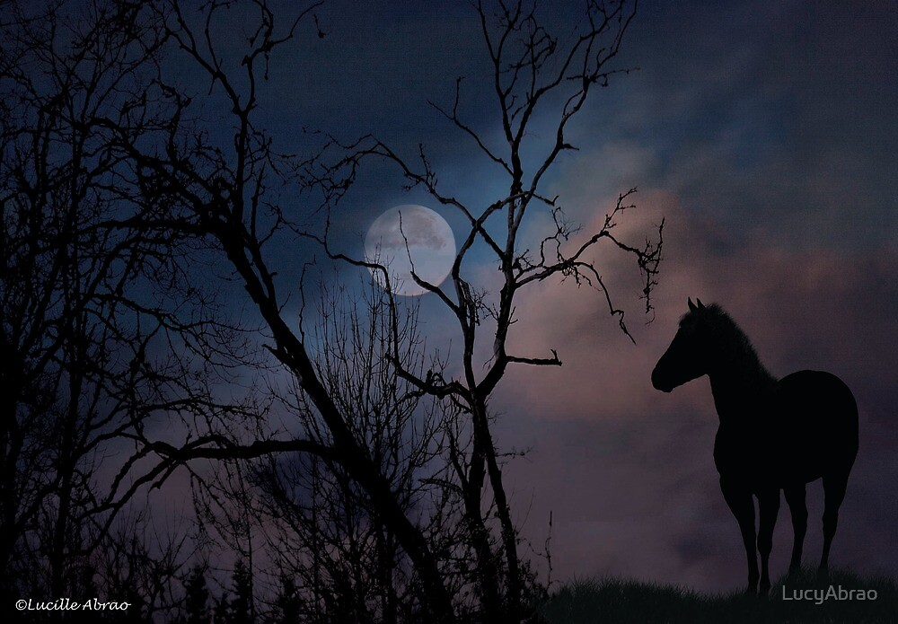 Moon Watcher by LucyAbrao