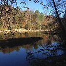 Alabama Lake by trisha22