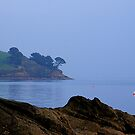 Misty Helford by AndyReeve