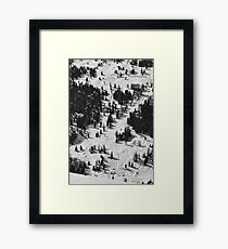 Red Scale Framed Print