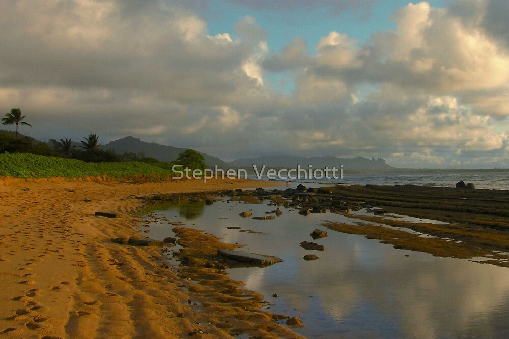 Tidal Pool Reflections by Stephen Vecchiotti