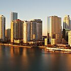 Miami Magic by Jayne Le Mee
