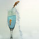 Drinks Like a Fish... by shall