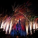Magic Kingdom by David James