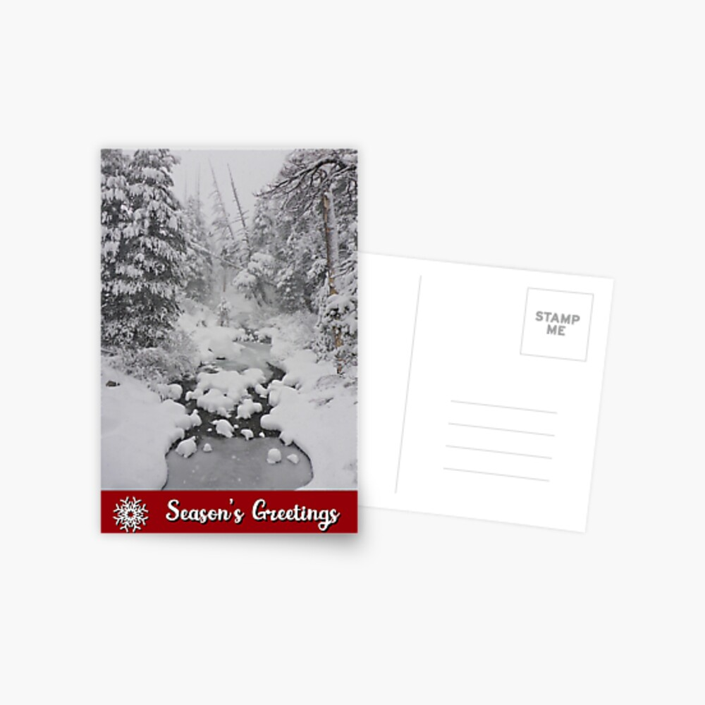 Snowy River and Forest Holiday Card Postcard