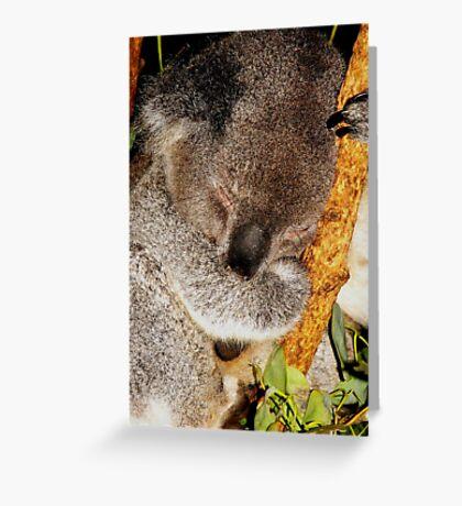 Sleepy Koala #1 Greeting Card