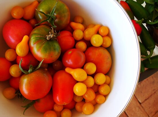 We're all tomatoes here.... by LouJay