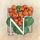 N is for Nasturtium by Stephanie Smith