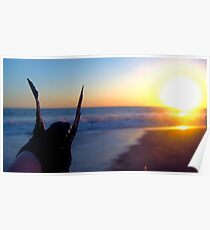Baby Turtle in Beach Sunset Poster