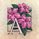 A is for Azalea Flower Monogram by Stephanie Smith
