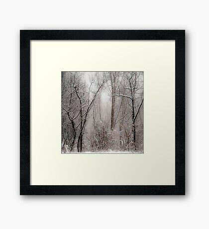 March Snow Framed Print