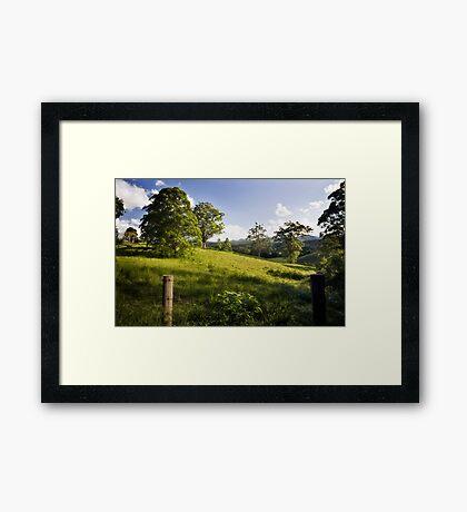 Rolling hills of Bellingen Framed Print