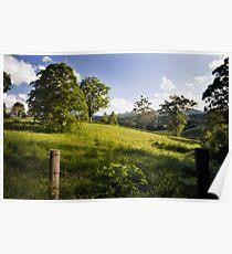 Rolling hills of Bellingen Poster