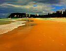 Burleigh Beach  by Virginia McGowan