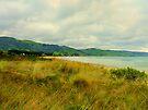 Apollo Bay great ocean road Victoria by Virginia McGowan