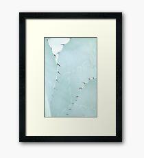 Gently thorn Framed Print