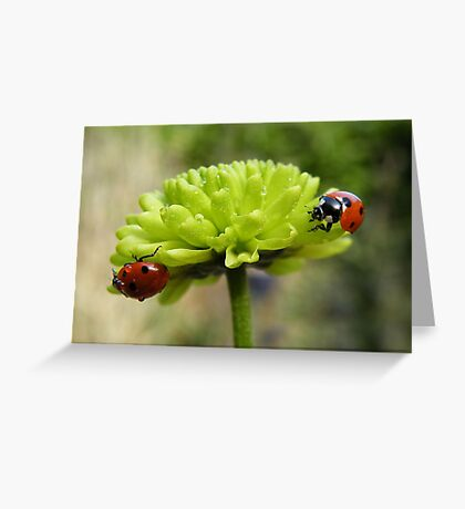 The chase.... Greeting Card