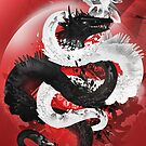 Yin And Yang by visualfreaks