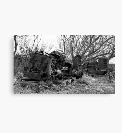 Once Were Workhorses (#2 - mono) Canvas Print