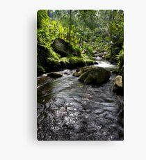 gunung kawi, bali Canvas Print