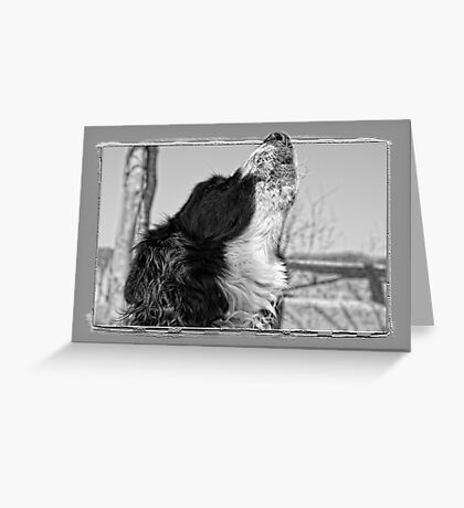 Howling Greeting Card