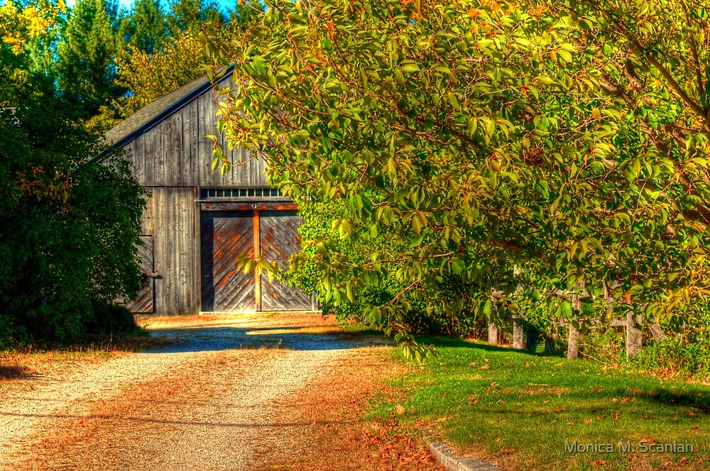 The Weathered Barn by Monica M. Scanlan