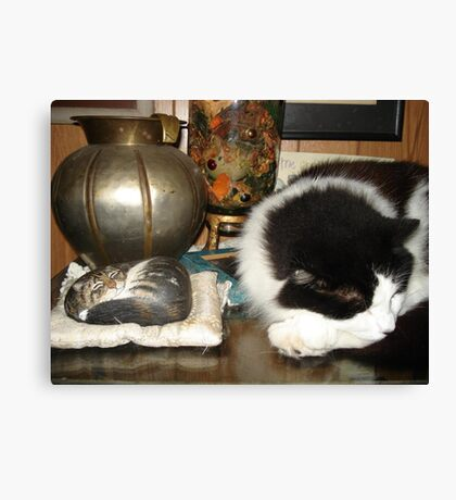 DOTTIE AND THE STONE CAT Canvas Print