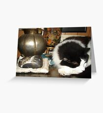 DOTTIE AND THE STONE CAT Greeting Card