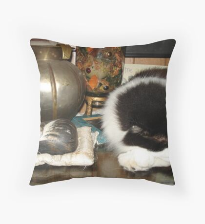 DOTTIE AND THE STONE CAT Throw Pillow