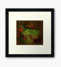 Nature Abstracted Framed Print