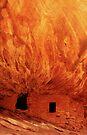House on Fire by Steve  Taylor